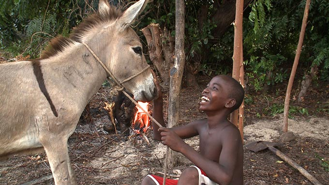Award-winning Kenyan documentary Donkey Island premieres on Al Jazeera English