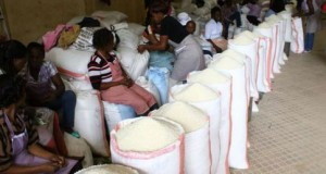 Why Tanzania's Rice To Attract VAT In Uganda