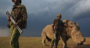 Paramilitary Force To Fight Against Poaching